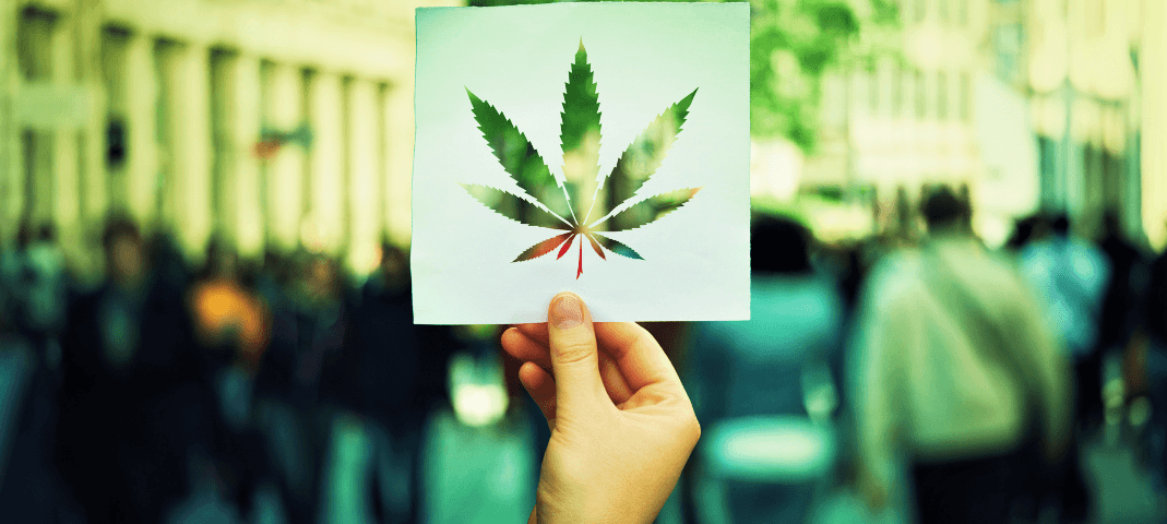 Cannabis Intellectual Property Rights